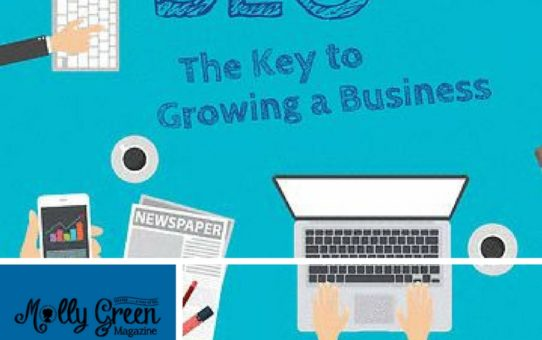 SEO The Key to Growing a Business